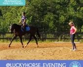 Ava Vojnovic luckyhorse_eventing (1)