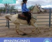 painting.paints