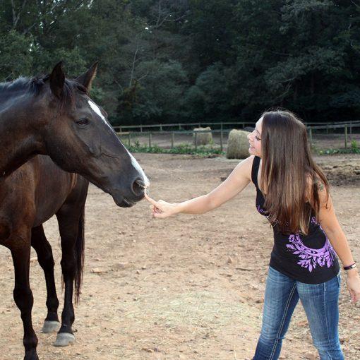 Life, Love, & Horses!