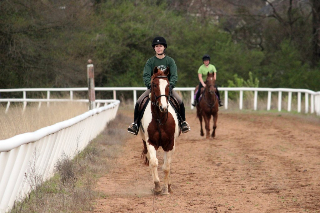 Ainsley Jacobs and JJ Spot at North Atlanta Equestrian