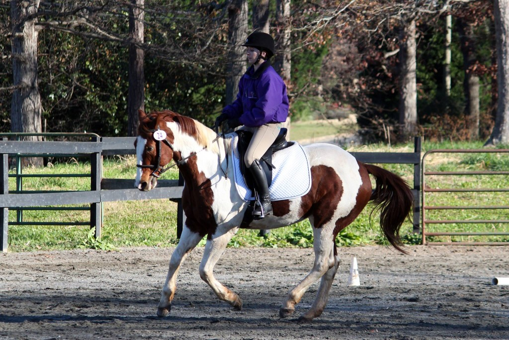 Ainsley and JJ dressage