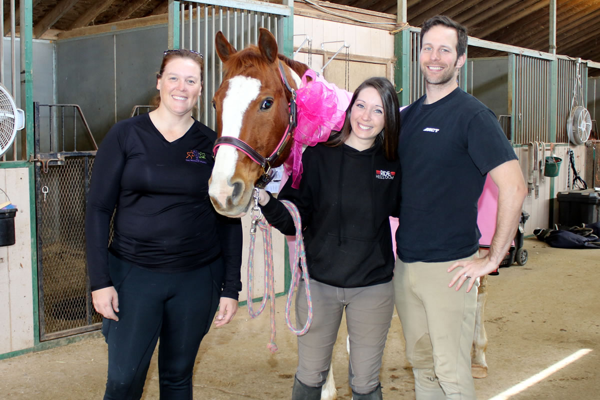 my first horse Being a first time horse owner is fun, rewarding and challenging these are your must-do things if you are considering horse ownership.