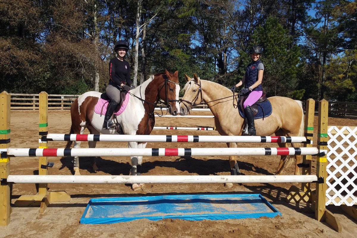 Training level eventing stadium jumps
