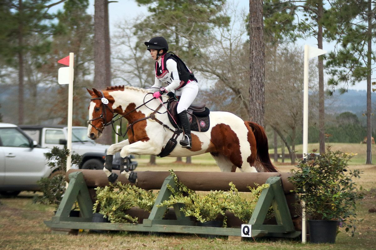 Novice eventing at Stable View in Aiken, SC