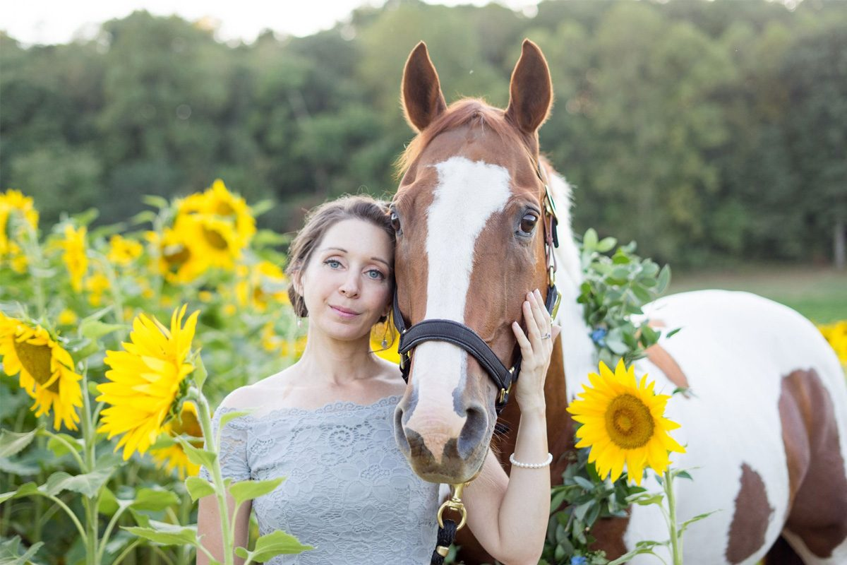 Horse in a sunflower field